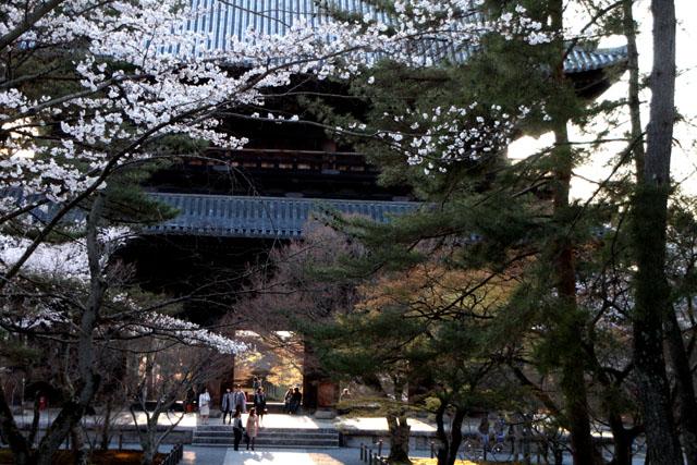 京の花だより 南禅寺_e0048413_9522764.jpg