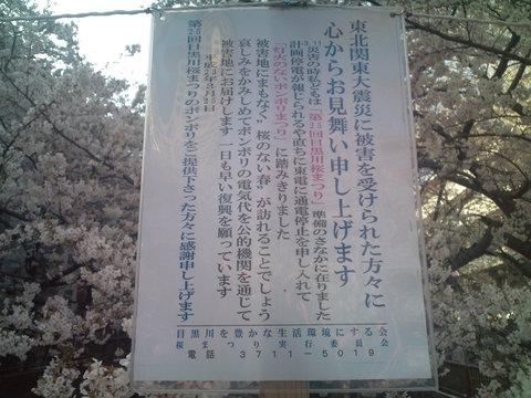 中目黒桜前線2011_e0173239_13522062.jpg