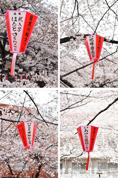 目黒川桜まつり_a0003650_21543550.jpg