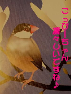 b0158061_2272096.jpg
