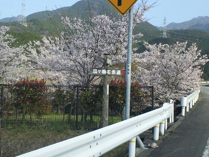 東温市観光協会非提供_c0001670_20103329.jpg