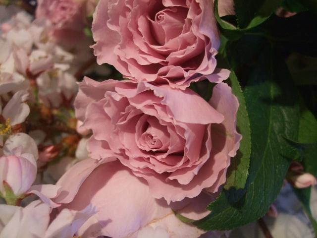 オークリーフ花の教室(石井さんの作品)_f0049672_18098.jpg