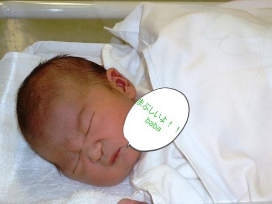 生まれました。_a0199979_16102176.jpg