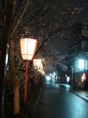 桜(その④)_f0201286_10145438.jpg