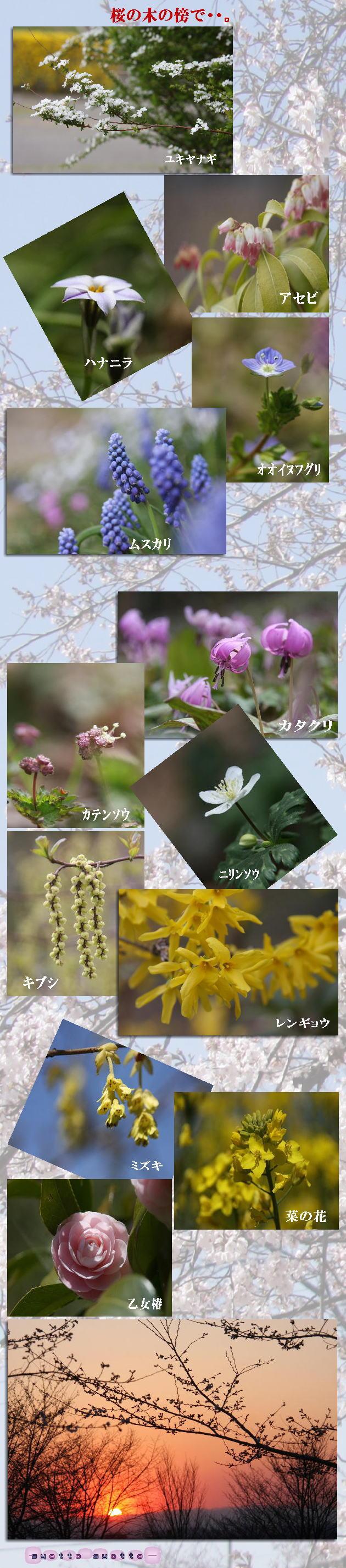 f0164592_111616100.jpg