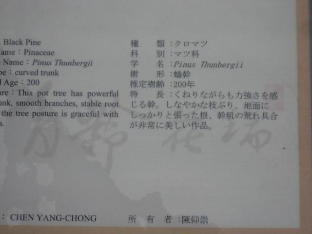 台湾5日目③_a0100706_23591760.jpg