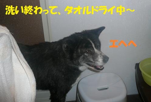 f0121712_23115997.jpg