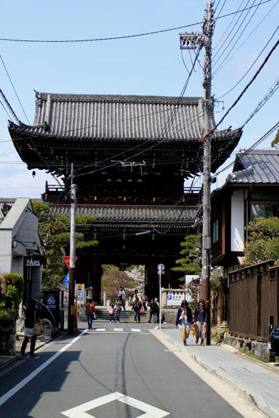 京の花だより 清涼寺 狂言_e0048413_2135576.jpg