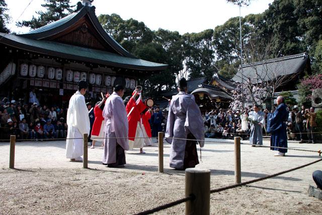 京の花だより 今宮神社やすらい祭_e0048413_21431774.jpg
