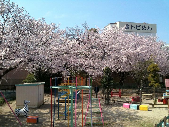今年の特別な桜_d0166534_10274586.jpg