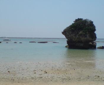 沖縄にて_a0157338_2057547.jpg
