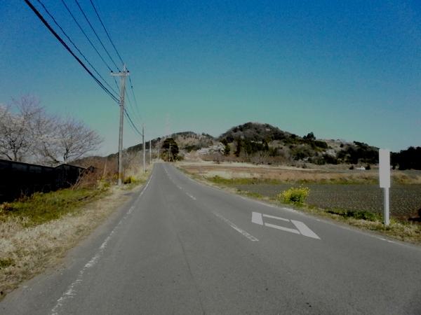 白鹿山と桜_a0174458_18402155.jpg