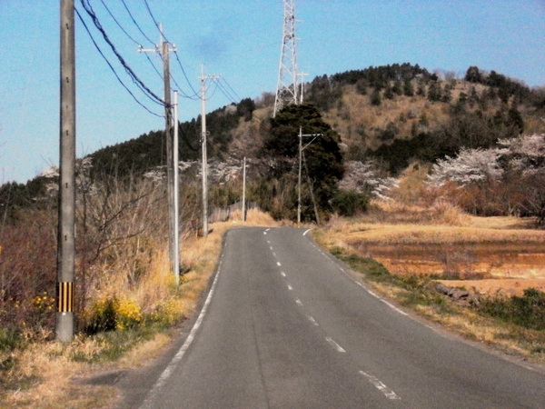 白鹿山と桜_a0174458_18414199.jpg