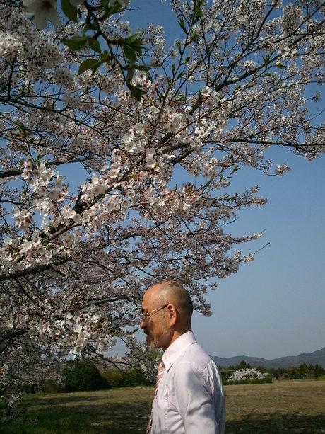 桜の精_a0077071_1643345.jpg