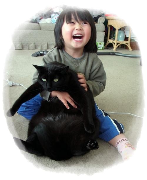 猫たちの受難_f0021101_1549693.jpg