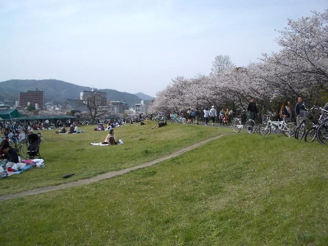 お花見散歩_a0047004_033018.jpg