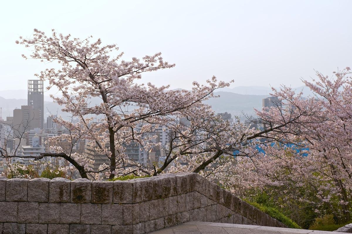 花曇り_f0231512_0394961.jpg