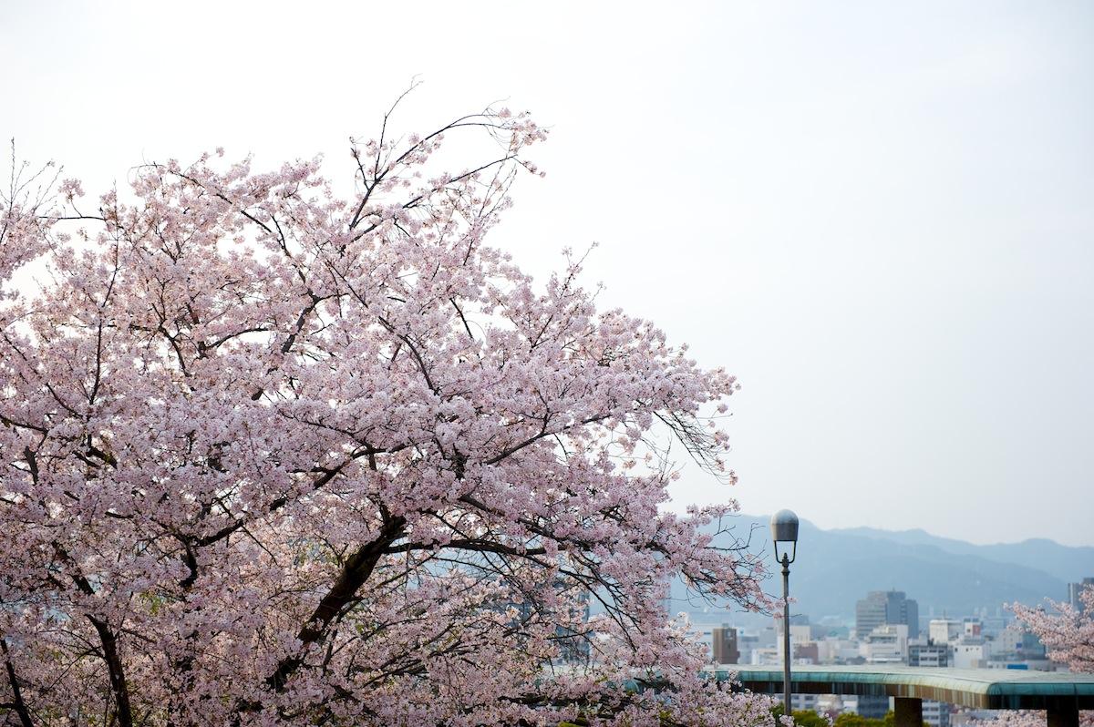 花曇り_f0231512_0414790.jpg