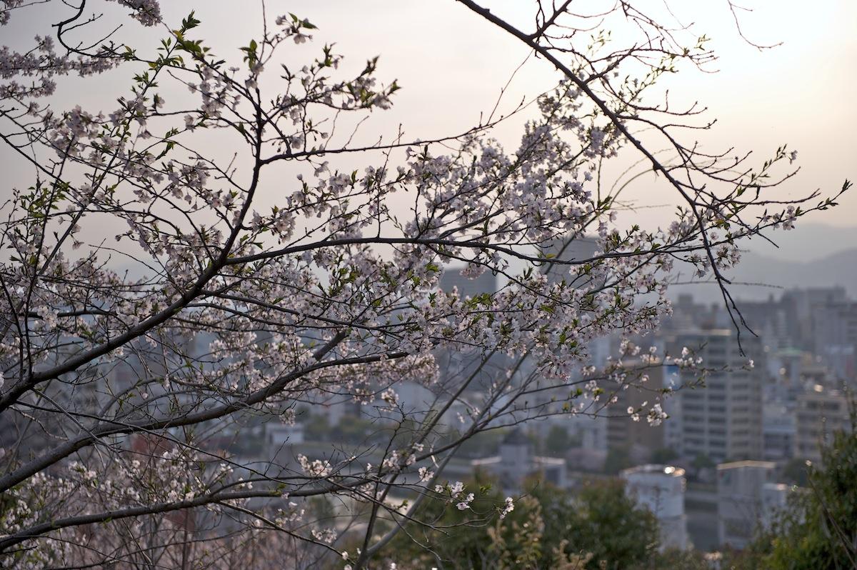 花曇り_f0231512_042269.jpg