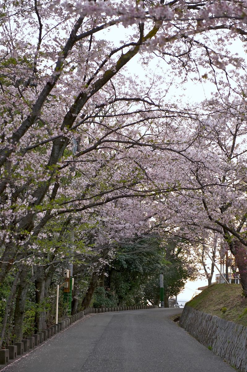 花曇り_f0231512_0442942.jpg