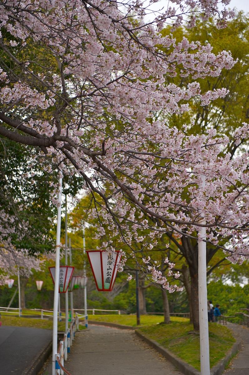 花曇り_f0231512_0475576.jpg