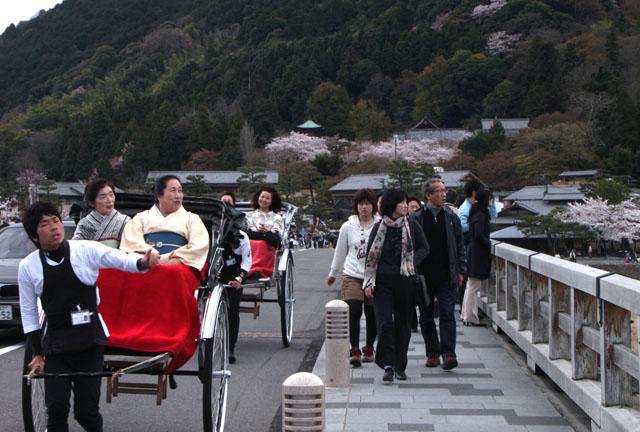 京の花だより 嵐山_e0048413_19481827.jpg