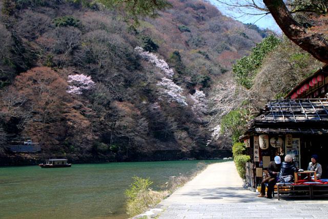 京の花だより 嵐山_e0048413_19484530.jpg