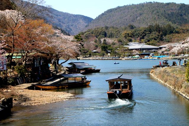 京の花だより 嵐山_e0048413_19492859.jpg