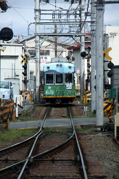 京の花だより 嵐電 桜のトンネル_e0048413_2026840.jpg