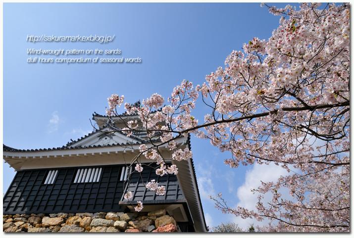 桜の光景2011 №02 浜松城公園の桜。_f0235723_14241699.jpg