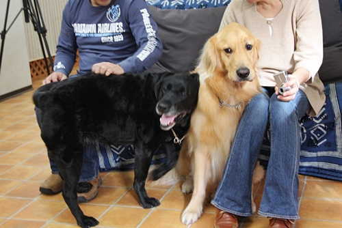 大型犬限定パーティー, 2010\'_e0191026_23534595.jpg