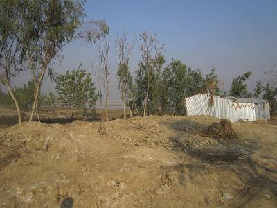【JEN通信】パキスタンの大洪水_e0105047_173949.jpg