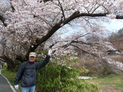 新府の桃0.5分咲、わに塚・神代桜最高♪_f0019247_0103253.jpg