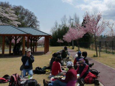 新府の桃0.5分咲、わに塚・神代桜最高♪_f0019247_0165589.jpg