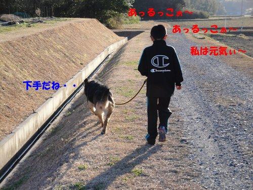 b0113663_835398.jpg