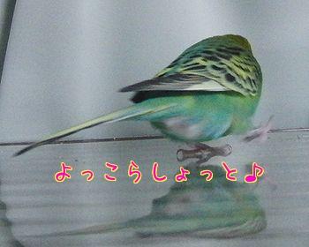 f0196665_23204489.jpg