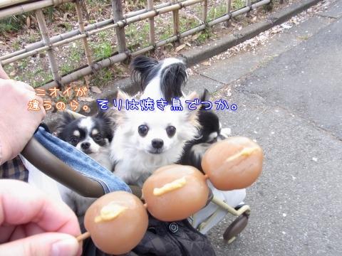 e0059267_0112210.jpg