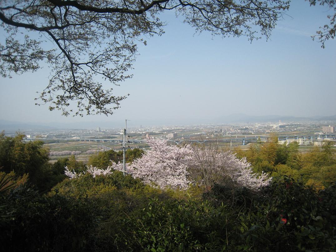 石清水八幡宮_f0205367_1948485.jpg