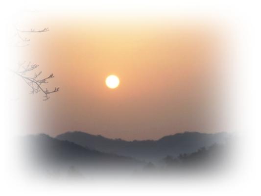 田舎の朝_a0199979_11211162.jpg