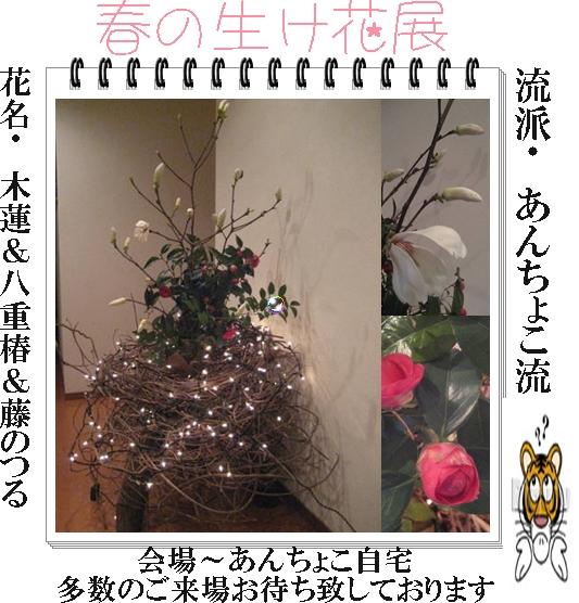 f0175279_8334780.jpg