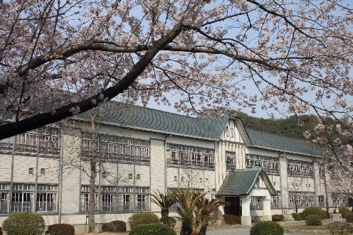 西脇小学校、子どもたちを見守るレトロモダンな校舎(兵庫)_b0067283_10504828.jpg