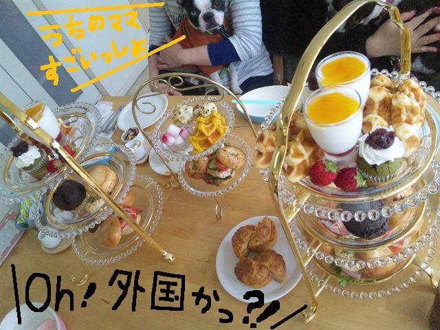 城北公園&しあん★サプライズ再び…_d0187891_20222124.jpg