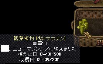 d0118293_16492685.jpg