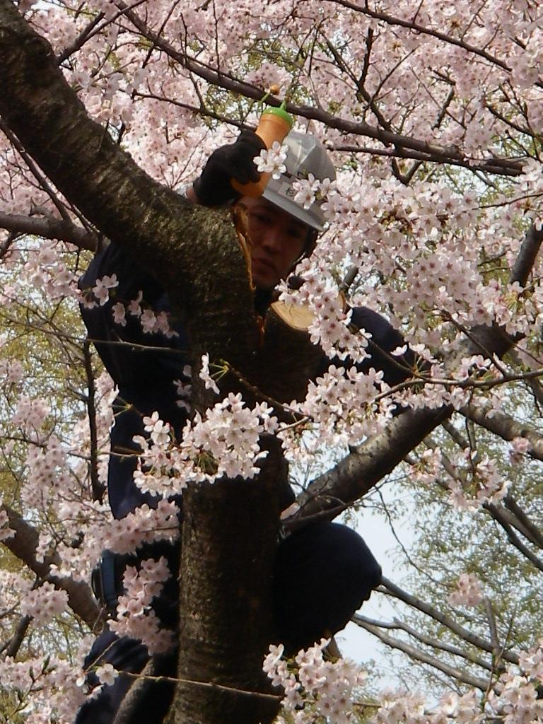 記念公園通信_b0172896_164421.jpg