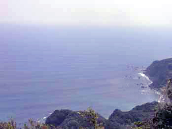 海!_d0184326_646898.jpg
