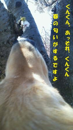 f0176830_13423553.jpg