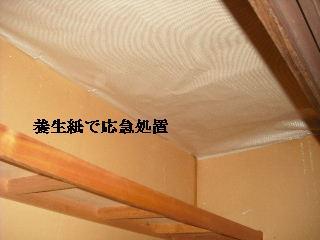 f0031037_20504162.jpg