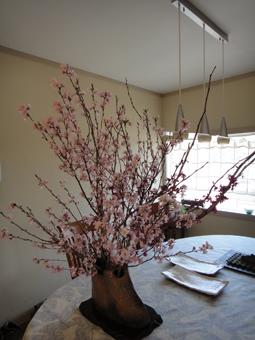 桜が満開_e0109554_10192579.jpg
