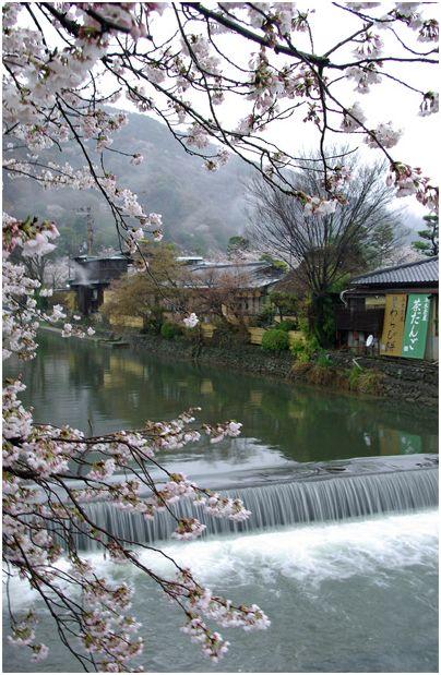京の春 _f0012154_13333593.jpg