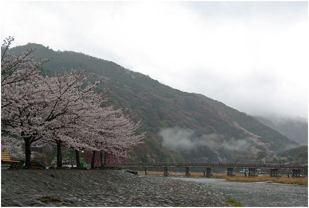 京の春 _f0012154_13334376.jpg